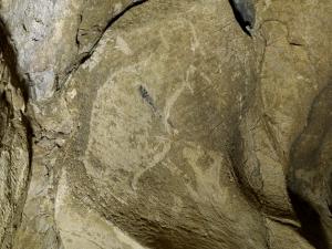 Bisonte herido de Altxerri