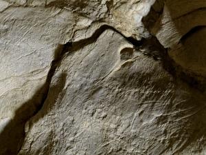 Pájaro de Altxerri