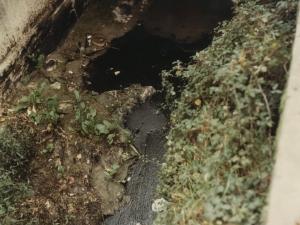 Contaminación acuática en la bahía de Pasaia