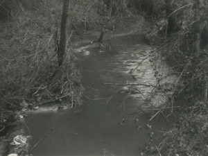 Aguas procedentes de la escombrera del vertedero de San Marcos