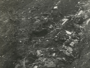 Vertedero escombrera de Nava, cercano a Alano