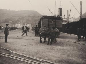 Par de bueyes tirando un carro de madera en el puerto de Pasaia