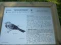 Larraitz ibilbide irisgarria