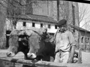Campesino en la plaza de Zizurkil