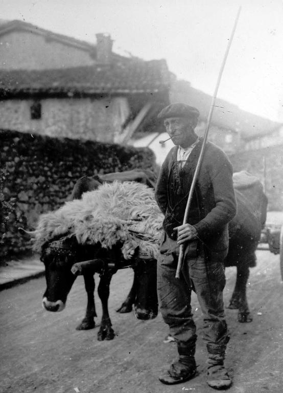 Campesino del barrio de Arrondo de Ataun con la pareja de bueyes