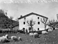 """""""Mendaro. Caserio Berasaluce"""""""
