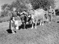 Labores del campo en el caserío Artamendi