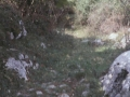 Marea Gañako Galtzara