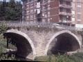Torreko zubia (Torreauzo)