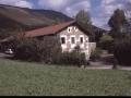Juantenea (Pantene)