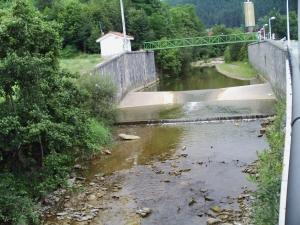 rio estanda