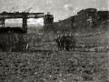 OBRAS DE RECONSTRUCCION DEL VIADUCTO DE ORMAIZTEGI. (Foto 1/2)