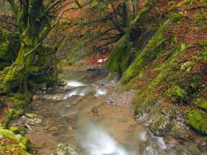 rio en invierno