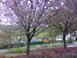 Primavera en Ordizia