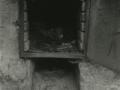 XIX. mendeko kare hidrauliko lantegien aztarnak : Iraeta lantegia