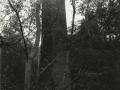XIX. mendeko kare hidrauliko lantegien aztarnak : N. S. Dolores lantegiaren tximinia