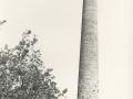 XIX. mendeko kare hidrauliko lantegien aztarnak : Zumayanako lantegiaren tximinia